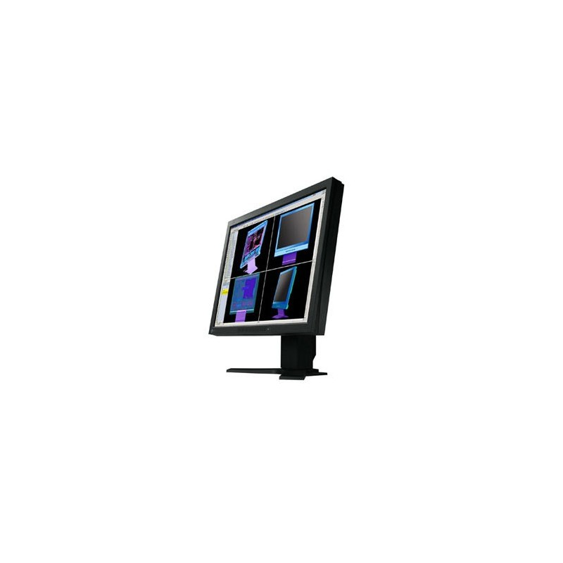 Monitoare second hand Eizo FlexScan L985EX